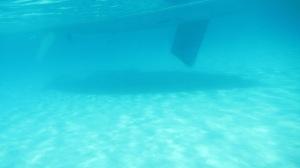 Parzine underwater